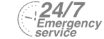 24/7 Emergency Service Pest Control in Crystal Palace, Upper Norwood, SE19. Call Now! 020 8166 9746